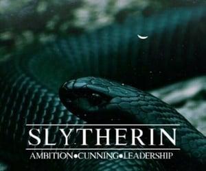hogwarts slytherin aesthetic/traits