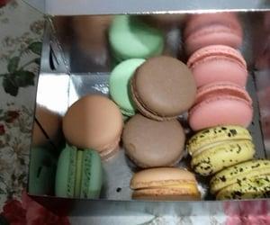 colorful, sweet, and macarons image