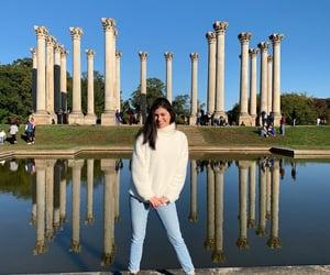 usa, Washington DC, and arboretum image