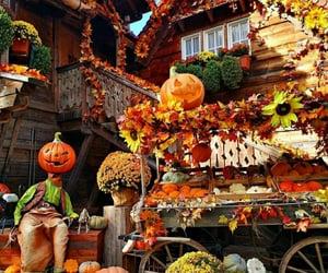 calabazas, Halloween, and inspiracion image