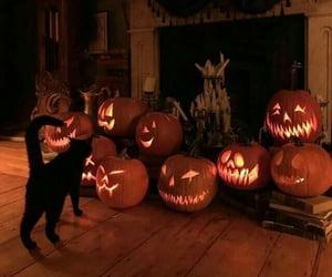 Halloween, pumpkin, and cat image