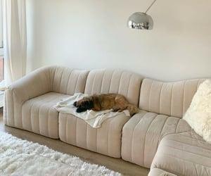 beige, creamy, and decor image