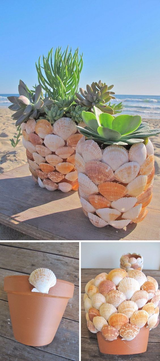 beach, diy, and shell image