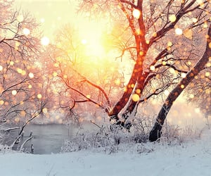 cold, nature, and peace image