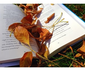 books, leaves, and Halloween image
