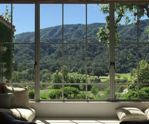 nature, view, and window image