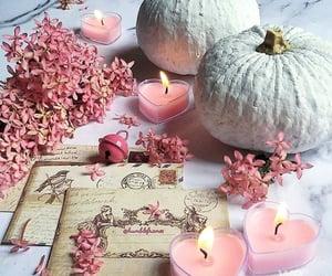 autumn, fall, and hello november image