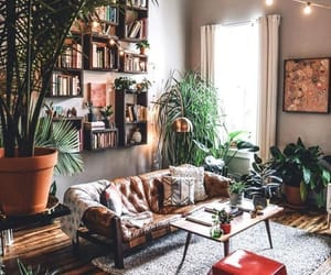 home, plants, and book image