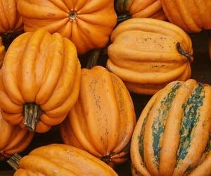 pumpkins, autumn, and fall image