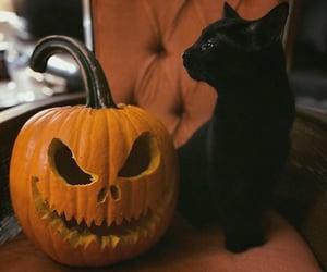 holiday, jack o lantern, and autumn image