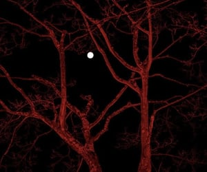 full moon, theme, and trees image