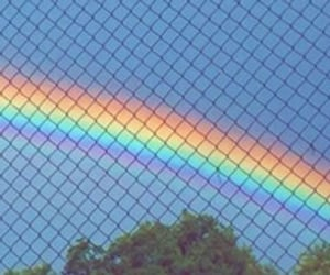 rainbow, header, and colors image
