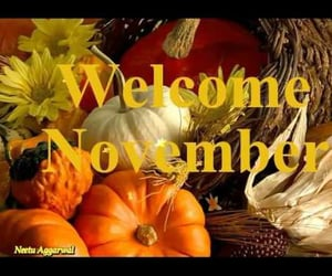 november, happy november, and pumpkins image