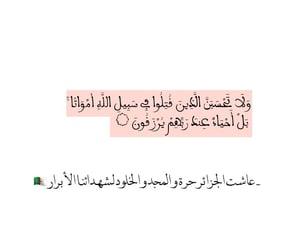 Algeria, allah, and arab image