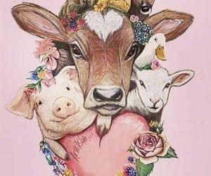 vegan, veganism, and world vegan day image