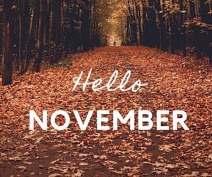 hello, november, and quotes image