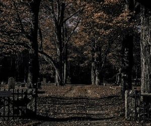 cemetery, fallen leaves, and gateway image