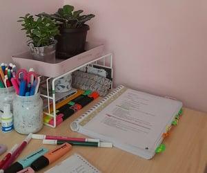 aesthetic, economics, and plants image
