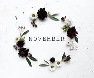 november, month, and fall image