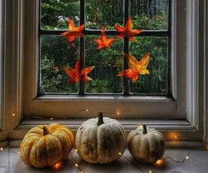 autumn, fall, and hogar image