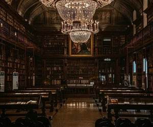dark academia, book, and library image