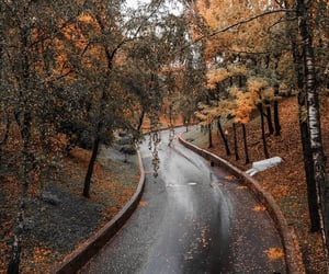 autumn, belarus, and europe image
