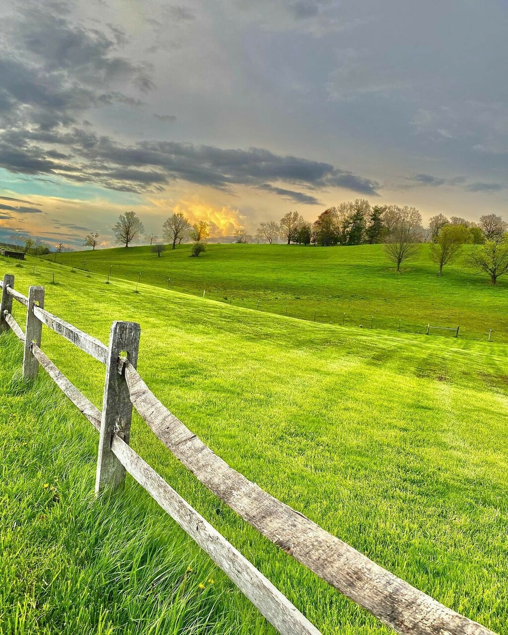country living, countryside, and farm image