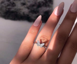 ring and butterfly image