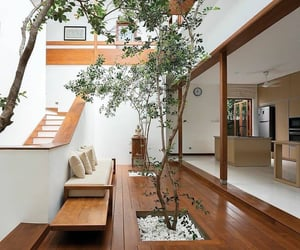 home, interior, and tree image