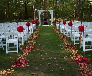 outdoor wedding ideas, wedding decoration ideas, and top wedding decorstion image