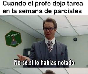 meme, escuela, and tarea image