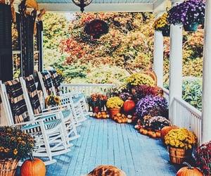 autumm, fall, and golden retriever image
