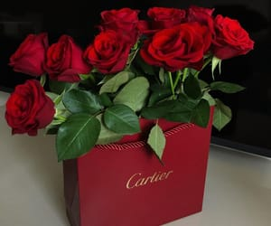cartier, flowers, and rose image