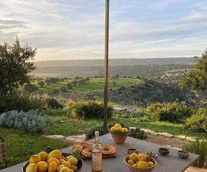 nature, lemon, and travel image