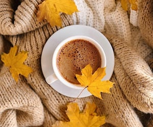 autumn, coffee, and coffee cup image