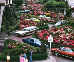 cars, flowers, and 90s image