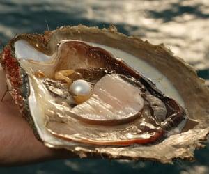 pearl, sea, and ocean image