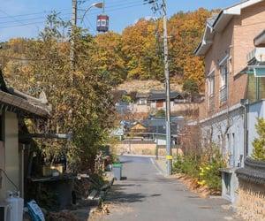 autumn, landscape, and minimal image