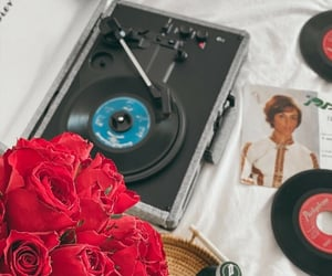 flower, music, and red image