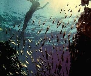 beauty, sea, and magic image