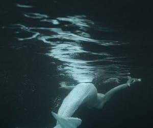 beauty, sea, and Dream image