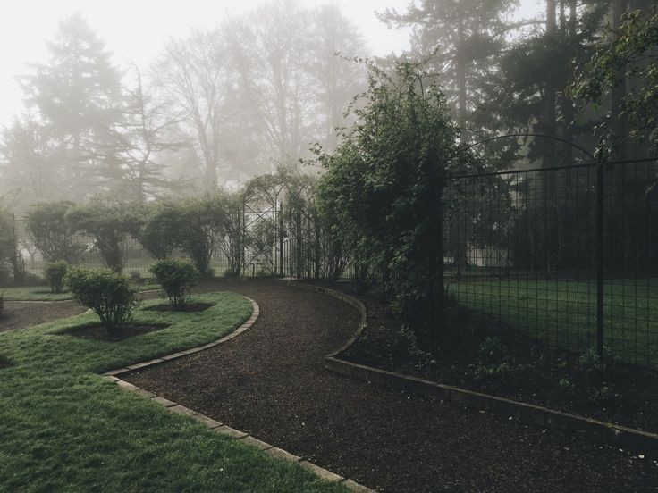 aesthetic, garden, and tree image