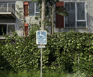 apartments, flora, and parking image