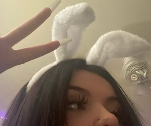 bunny and icon image
