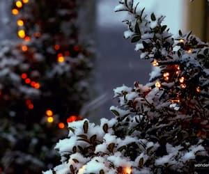 christmas, cold, and gif image