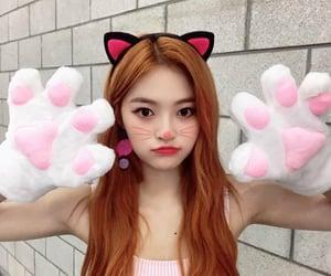 cat girl, catgirl, and DIA image