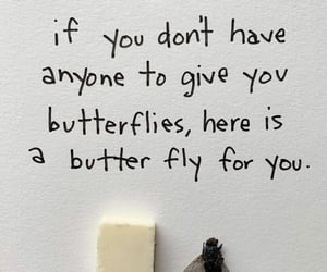 butter, butterfly, and funny image