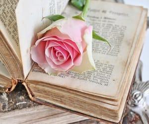 bloem boek roze image