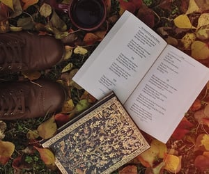 autumn, fall leaves, and journal image