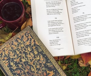 fall leaves, journal, and autumn cozy image